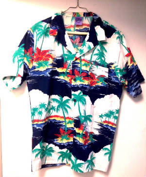 Brimfield Hawaiian shirt.JPG