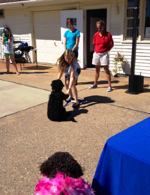Doggie Funday talent contest.JPG