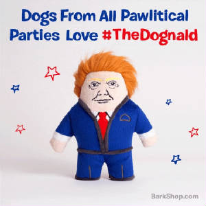 The Dognald dog toy from Barkbox.jpg