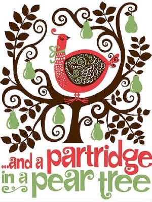 partridge in a pear tree.jpg