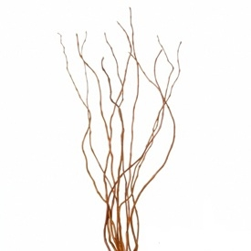 She would weave in curly willow branches.jpg